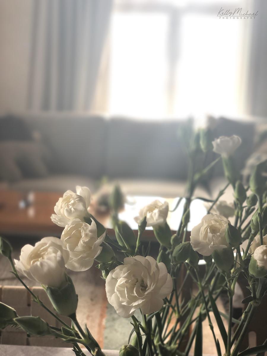 Olohuone yksityiskohta, kukkasia